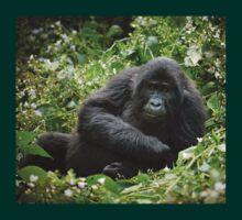 young mountain gorilla, BwindiUganda T-Shirt