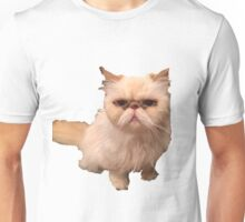 Abba The Cat Unisex T-Shirt