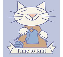 Time to Knit Cat Photographic Print