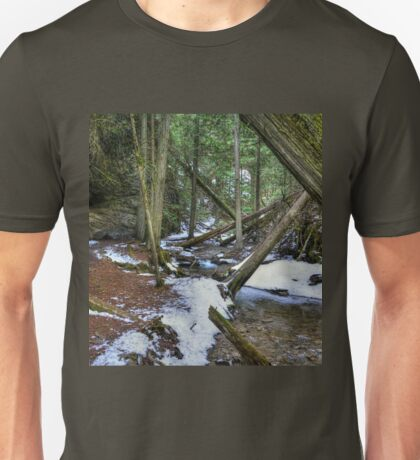 Valley of the Fallen Trees Unisex T-Shirt
