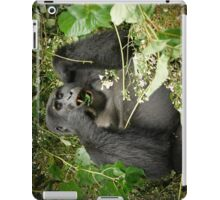eating mountain gorilla, Uganda iPad Case/Skin