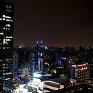 Shanghai Night by Lynn Bolt