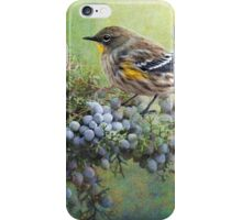 autumn juniper berries and yellow rumped warbler iPhone Case/Skin