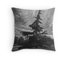 Black and White Tree and Winter Sky  Throw Pillow