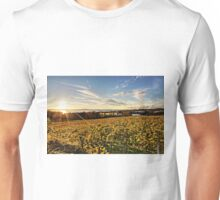 Sunset over Grape Orchards - Lake Constance Unisex T-Shirt