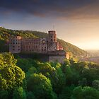 Heidelberg Castle by Michael Breitung