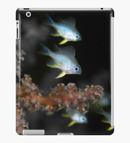 Small Fry Squadron iPad Case/Skin