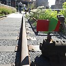 Abandoned Switch, High Line, New York City's Elevated Garden and Park by lenspiro