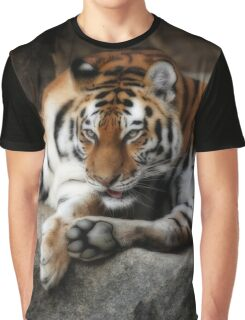 tiger cats Graphic T-Shirt