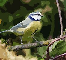 "Birds story, "" fawn paint Picasso ! ""  the Blue Tit - Olao-Olavia by Okaio Créations  by okaio caillaud olivier"