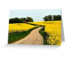Driving through the rapeseed fields  Greeting Card