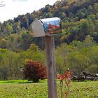 Country Mailbox by vigor