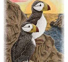 Puffins on Cliff Watching Sun Setting by jkartlife