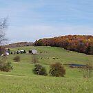 Fall on the farmland by vigor