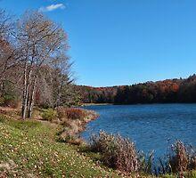 Day at the lake by vigor