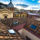 Panorama from the roofs of Naples by ssviluppo