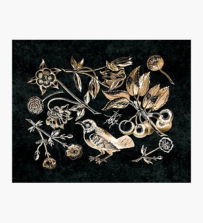 Golden set of birds, beetle, flowers and cherry fruit Photographic Print