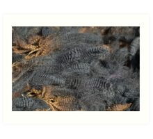 Natural Charcoal Grey Romney Fleece Art Print