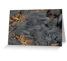 Natural Charcoal Grey Romney Fleece Greeting Card