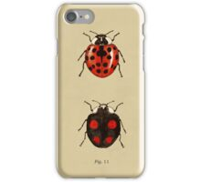 Coccinellidae entomology studies fig. 11 iPhone Case/Skin
