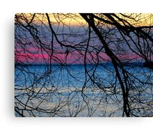 Simply Amazing Canvas Print