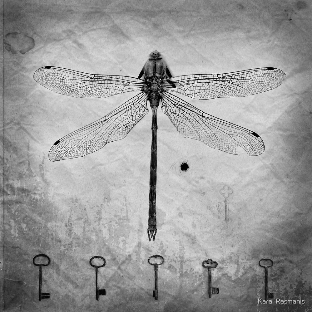 Dragonfly, texture, keys by Kara  Rasmanis