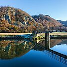The Chinese Bridge over the River Derwent in the English Lake District by Martin Lawrence