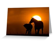 Twilight Mustangs Greeting Card