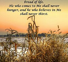 The Bread Of Life by Charles & Patricia   Harkins ~ Picture Oregon