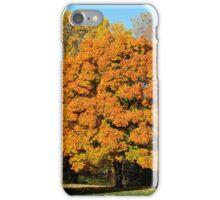 Autumn in Missouri iPhone Case/Skin