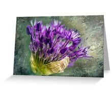 Allium Blossoms Greeting Card