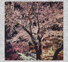 Sakura - Cherry Blossom - Kyoto One Piece - Long Sleeve