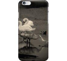 Dorset Swans iPhone Case/Skin