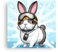 rescue rabbit Canvas Print