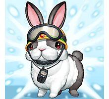 rescue rabbit Photographic Print