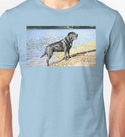 LR black full Unisex T-Shirt