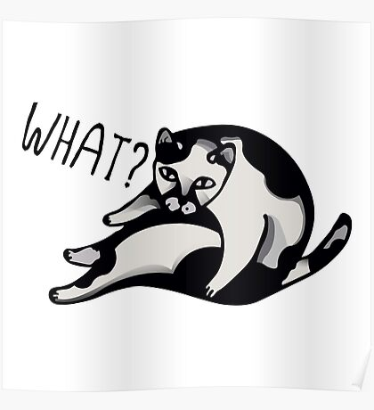 What Cat Poster