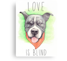LOVE IS BLIND - Stevie the wonder dog Metal Print