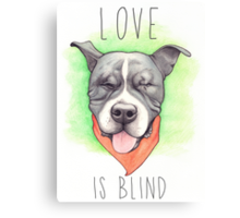 LOVE IS BLIND - Stevie the wonder dog Canvas Print