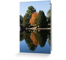 Defying the Green - the First Autumn Tree Greeting Card