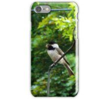 Chickadee iPhone Case/Skin