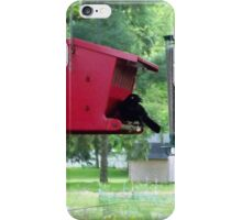 Grackle iPhone Case/Skin
