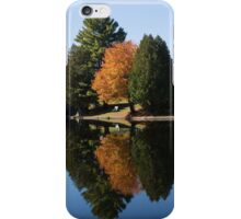 Defying the Green - the First Autumn Tree iPhone Case/Skin