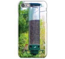 House Finch iPhone Case/Skin