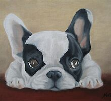 French Bulldog  by Noewi