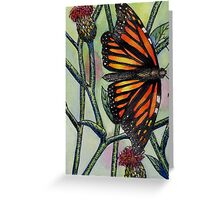 Butterfly and Thistles Greeting Card