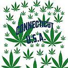 Connecticut  Marijuana Cannabis Weed Connecticut by MarijuanaTshirt
