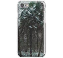 Weather Patterns iPhone Case/Skin