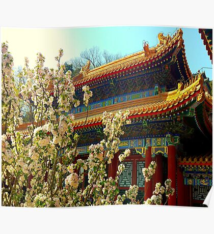 Beijing Summer Palace in bloom Poster