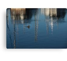 Young Red-Necked Grebe on Silver Canvas Print